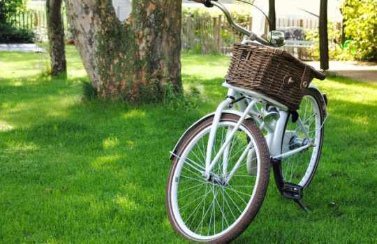 La-Mejor-Cesta-Para-Bicicleta