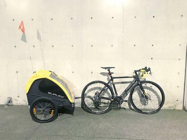 Trailer-de-bicicleta